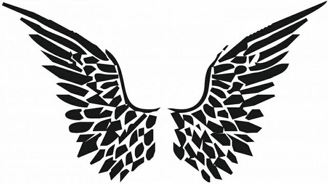 Wing02